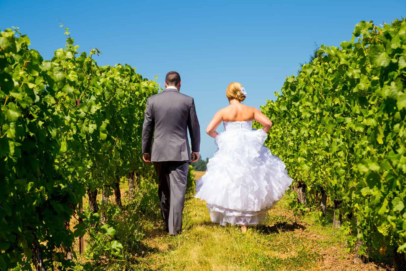 Braut und Bräutigam gehen an einem Weinberg in einem Weingut