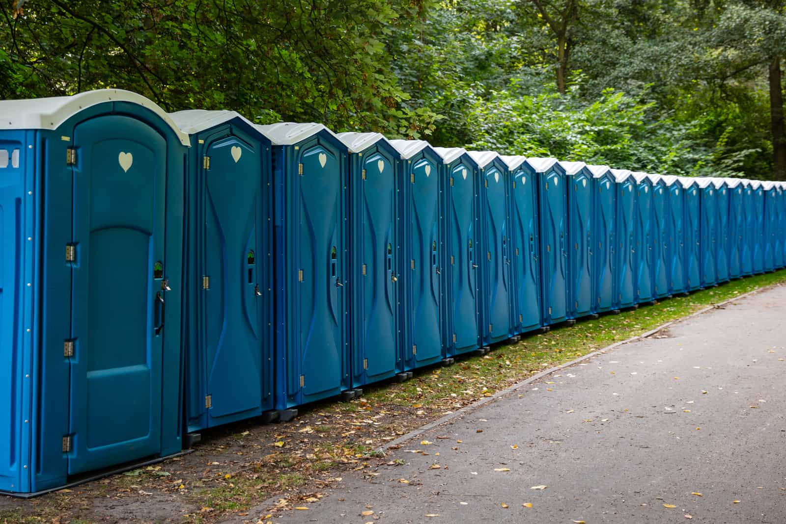 mobile Toiletten im Wald