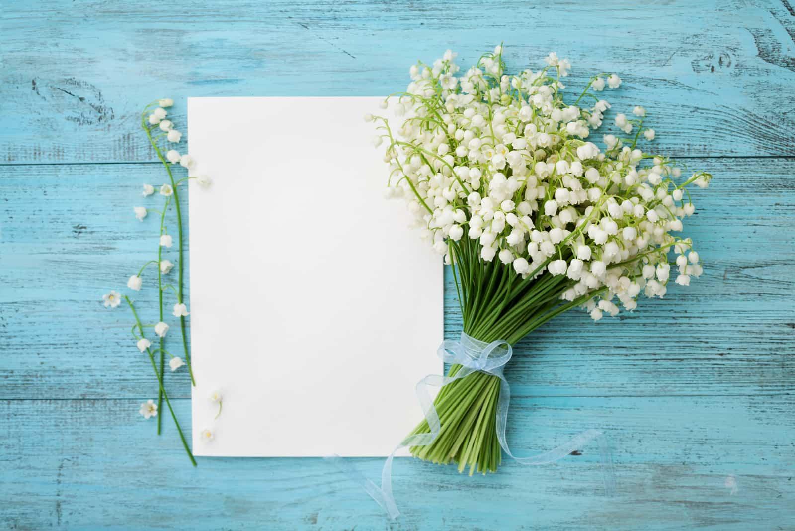 Blumen Maiglöckchen und leeres Blatt Papier