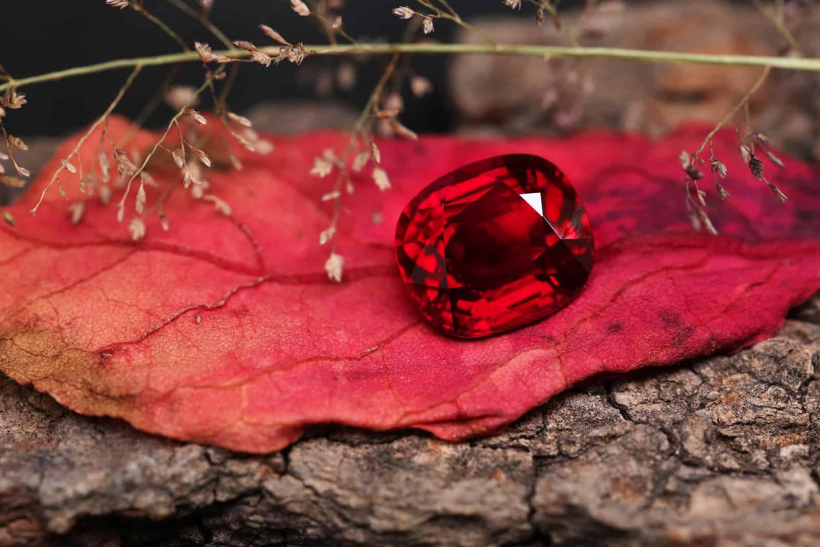 Rubin auf trockenem Blatt in der Natur
