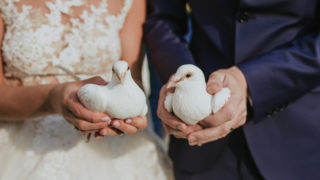 Braut und Bräutigam halten Hochzeitstauben